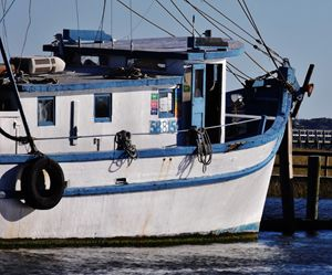 SHEM CREEK SHRIMPER
