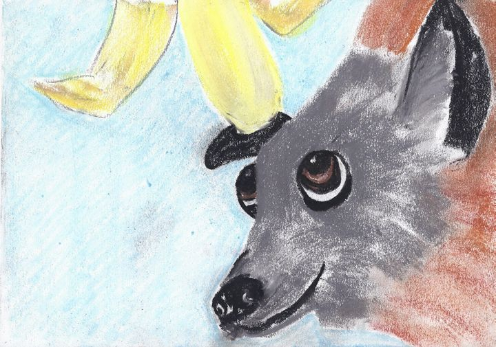 Frederick the Grey Headed Flying Fox - Andrea Devos