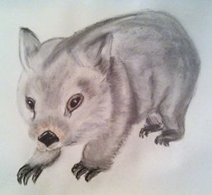 Wombat named Lenny