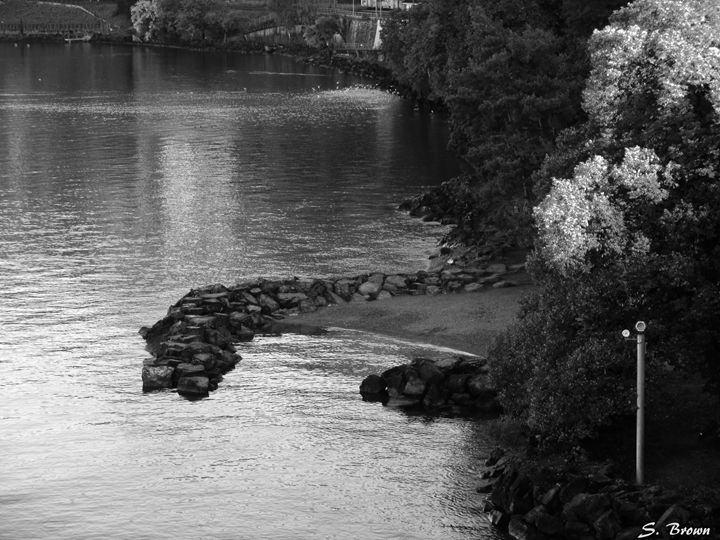 Black & White Water - S. Brown Photography