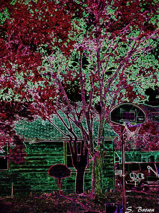 Neon Shadows - S. Brown Photography