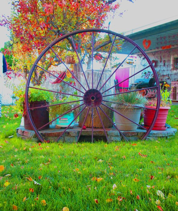Color Wheel - S. Brown Photography