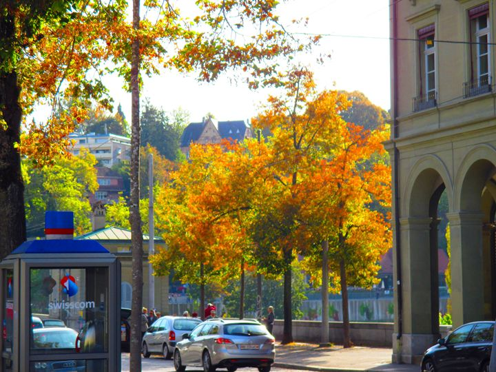 Fall in Switzerland - S. Brown Photography