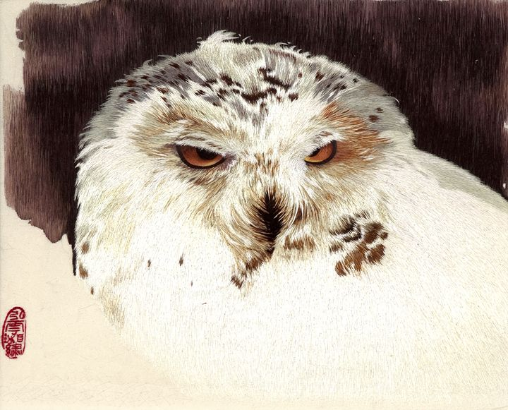 Snow Owl 1 - Mulberry Gallery