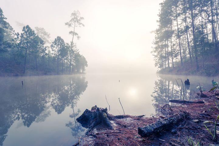 Misty Morning - Andreas Hagspiel Photography