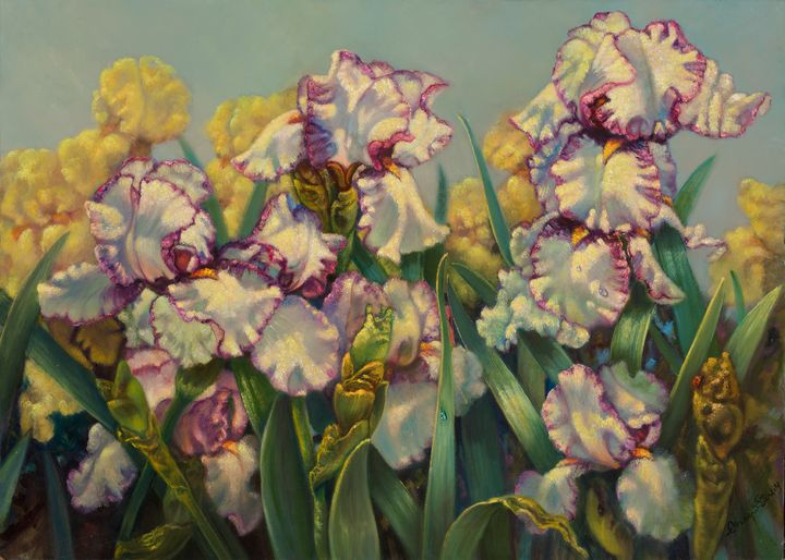 "Iris ""Hemstitched"" - The Art of Carolyn Sterling"