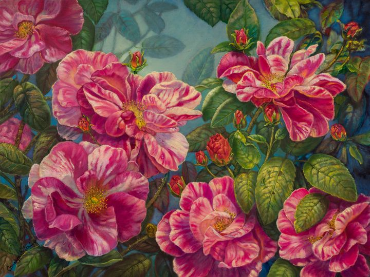 Rosa Mundi - God's First Rose? - The Art of Carolyn Sterling