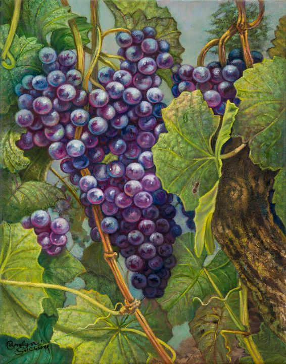 Harvest Time - The Art of Carolyn Sterling