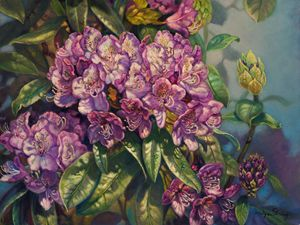Purple Passion Rhododendron - The Art of Carolyn Sterling