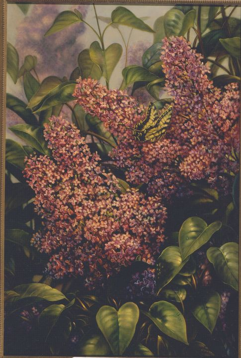 Lilac with Butterfly - The Art of Carolyn Sterling