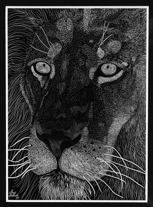 Lion - greg galanski gallery