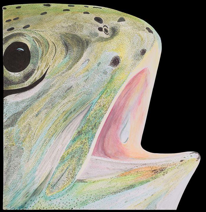 Rainbow trout - greg galanski gallery