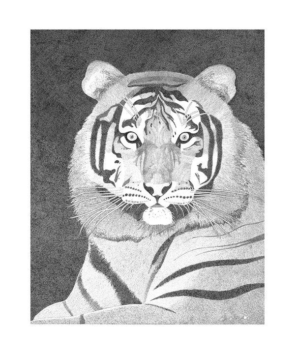 tiger - greg galanski gallery