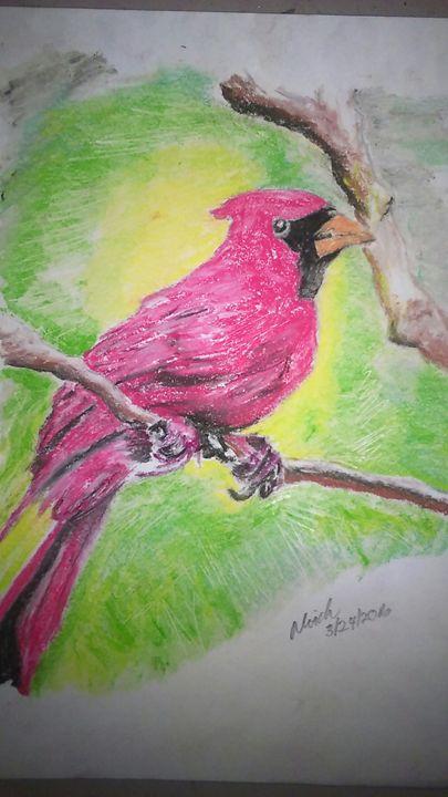 North Carolina Bird - Creative.Dredz