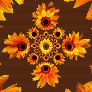 COFFEE BROWN GOLDEN SUNFLOWERS DESIG