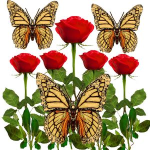 ABSTRACT BUTTERFLIES RED ROSE GARDEN