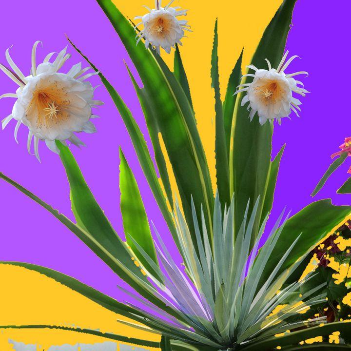 TROPICAL FLOWERS & AGAVES - sharlesart