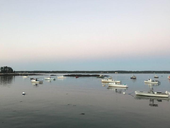 Maine Marina - Chloe Seaton