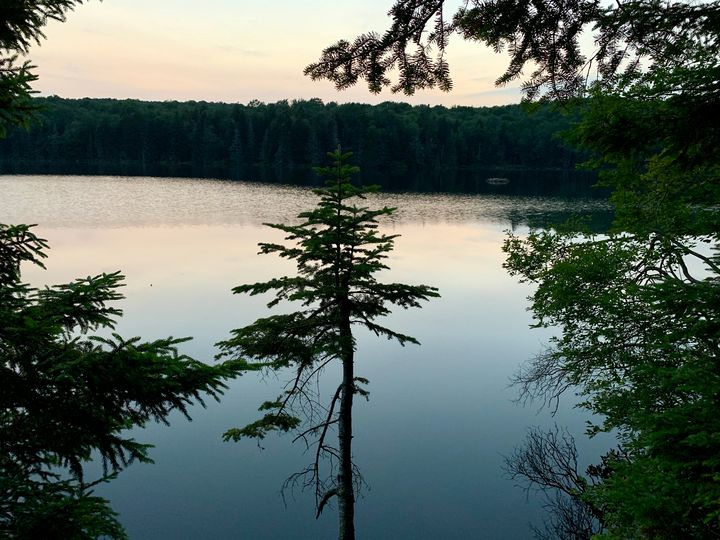 Vermont Forest Lake - Chloe Seaton