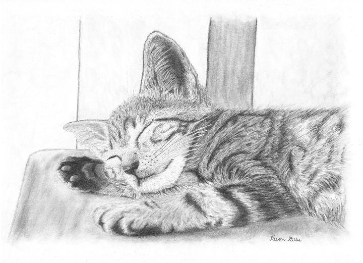 Kitten Taking A Well Deserved Nap - Devon Gillis