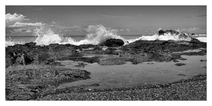 Ocean Front - Jana Rene' Photography
