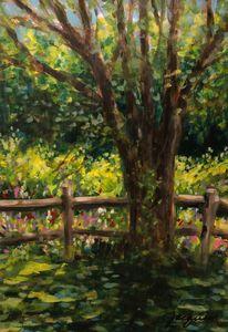 Sunny June Beechwood Farm
