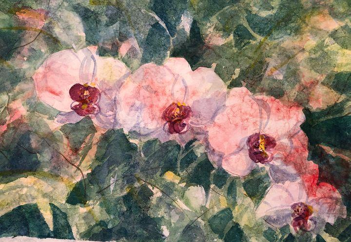 Orchids - Lynn Jacques Fine Art