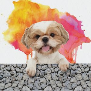 Puppy Digital Art