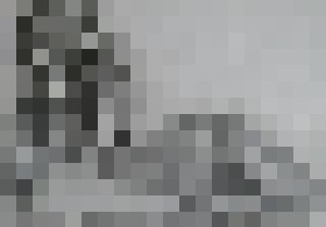 nude female