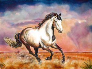 Champion (the Wonder Horse)