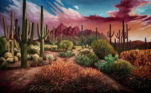 Saguaro cactus - Ina
