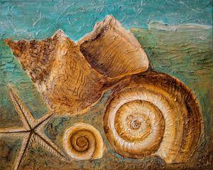 Seashell - Ina