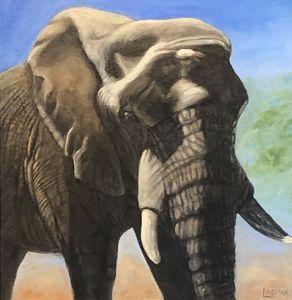 Elephant, Gentle Giant