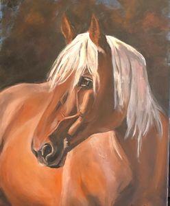 Horse Portrait 1