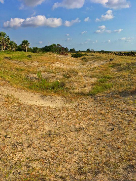 Morning dunes - Works By J. Johnson