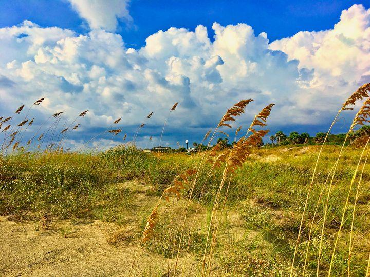 Morning Beach Jekyll - Works By J. Johnson