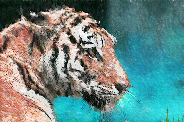 Bengal Tiger - Graphic Eleven