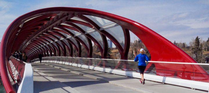 Calgary Peace Bridge - Studio 5