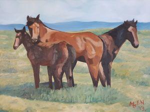 Wild Horses - Alens Gallery