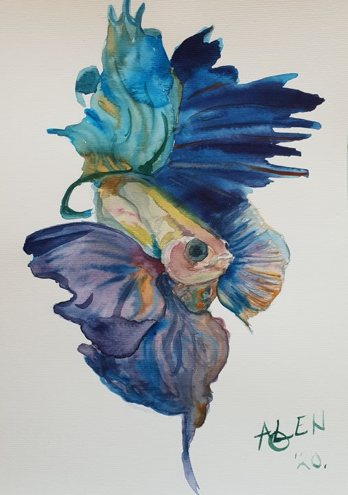 The Fighter Fish - Alens Gallery