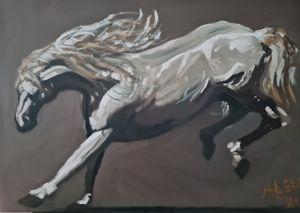 Jumping Horse: Lipizzaner II