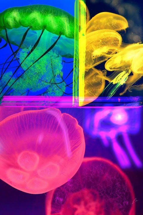 Reflets Colorés - Virginie
