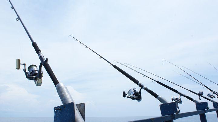 FISHING RODS - alitvfilm