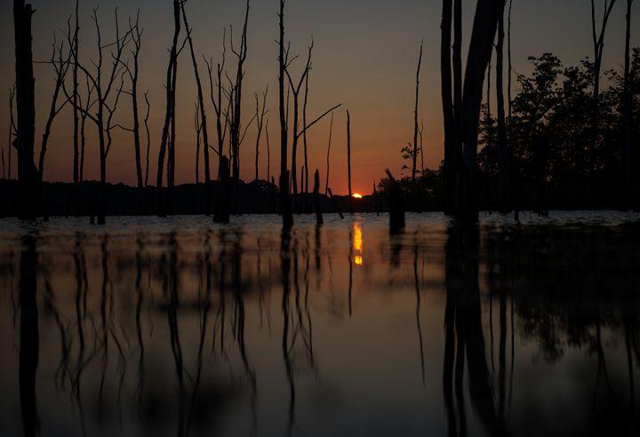 Manasquan Reservoir, New Jersey - Bill Baker Photography