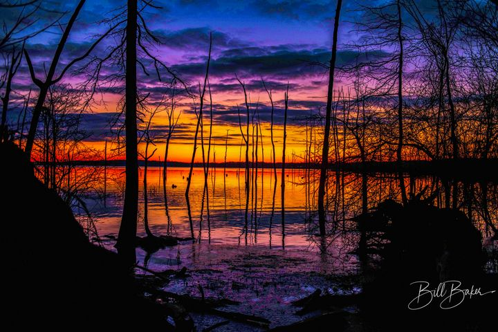 Manasquan Reservoir, New Jersey - Bill Baker Photography