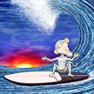 Surf Chimp