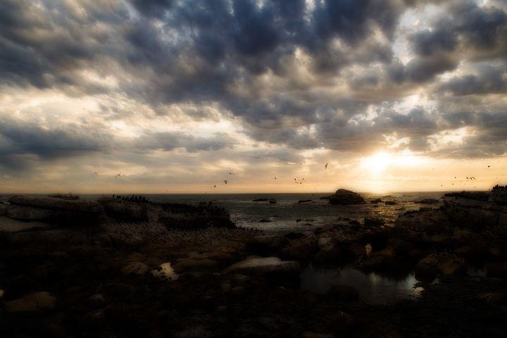 Lamberts Bay - Sarah-Jane Photography