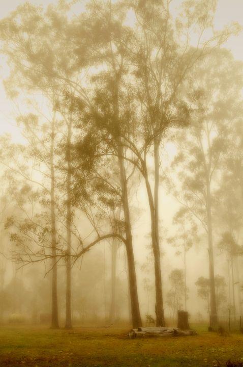 First light - Sarah-Jane Photography