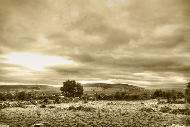 Country scene - Sarah-Jane Photography