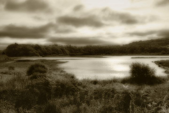 On the pond - Sarah-Jane Photography